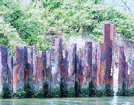 Marghera e laguna condannate all'inquinamento perpetuo