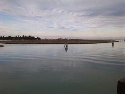 La manutenzione delle barene – Pescatori e ingegneri contro l'erosione