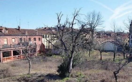 La desolante fine dell'orto botanico di Venezia