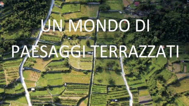 """""""Un mondo di paesaggi terrazzati"""" a Mirano"""