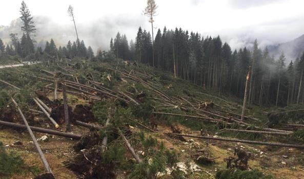 Un disastro ambientale annunciato